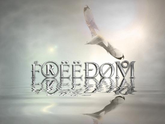 Freedom_Mind