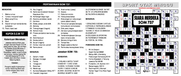 SOM737-ANS